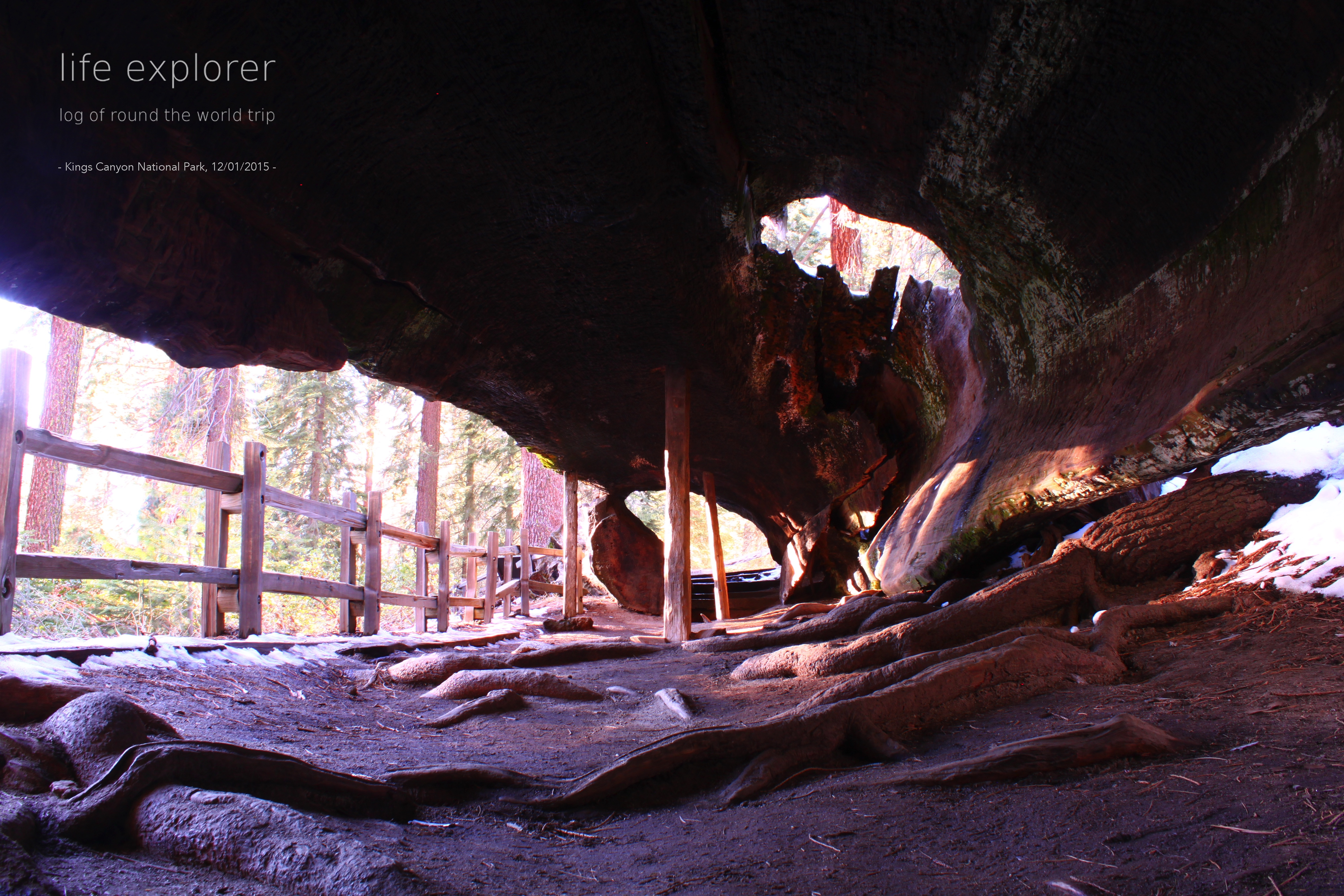 [Photo] 151201 US – Kings Canyon National Park