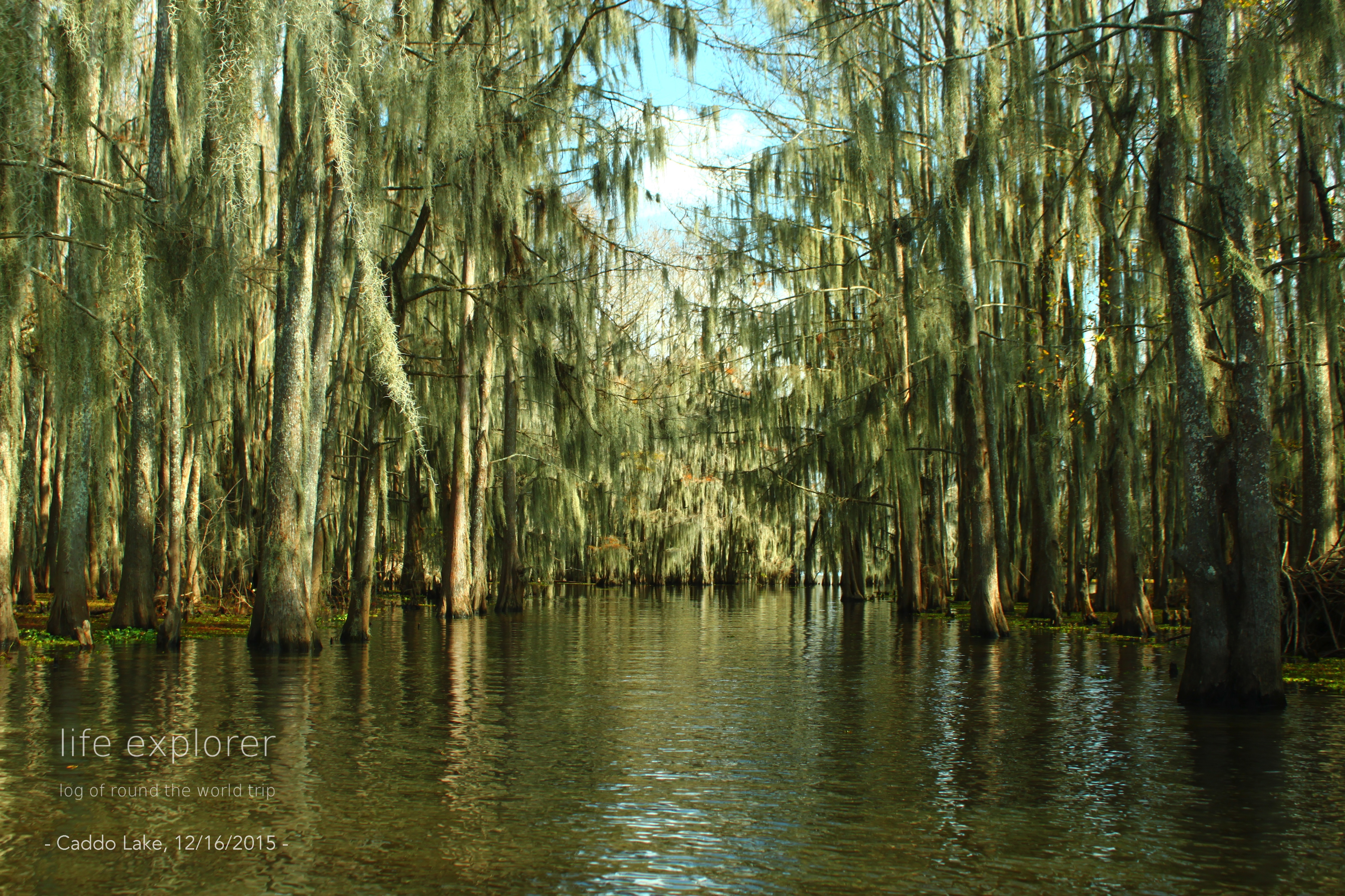 [Photo] 151215 US – Caddo Lake