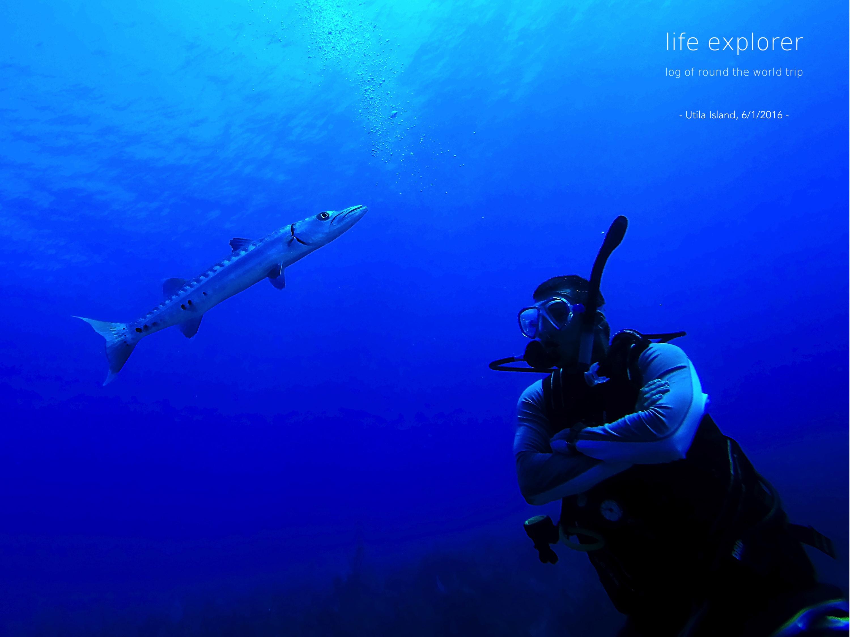 """#52 世界で最も安くダイビングライセンスが取れる場所 「ウティラ島」- The World's Cheapest Learn-to-Dive Destination """"Utila Island"""""""